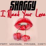Фото Shaggy - I Need Your Love (feat. Mohombi & Faydee & Costi)