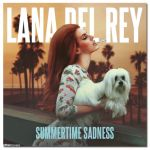 Фото Lana Del Rey - Summertime Sadness (Radio Mix)