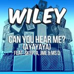 Фото Wiley - Can you hear me (Remix)