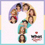 Фото Twice - What is Love