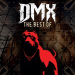 Фото DMX - Party Up