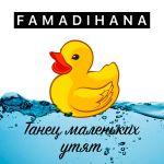 Фото Famadihana - Танец маленьких утят
