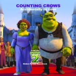 Фото Counting Crows - Accidentally In Love