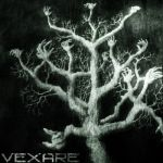 Фото Vexare ft. Sarah Hollews - Lanterns