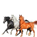 Фото Lil Nas X, Billy Ray Cyrus, Diplo - Old Town Road