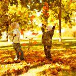 Фото Анастасия Карамышева - Золотая Осень