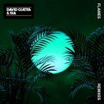 Фото David Guetta - Flames (Pink Panda Remix) (feat.Sia)