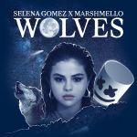 Фото Selena Gomez - Wolves (Rusko Remix) (feat.Marshmello)