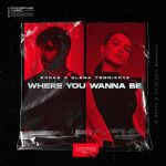 Фото Елена Темникова - Where You Wanna Be (feat. R3hab)