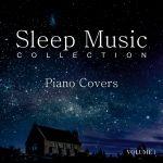 Фото Sleep Music Guys - Maps (Sleep Mix)