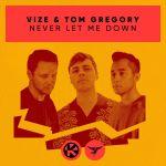 Фото Vize & Tom Gregory - Never Let Me Down