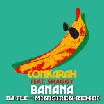 Фото Conkarah - Banana (DJ Fle Minisiren Remix) (feat. Shaggy)