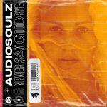 Фото Audiosoulz - Never Say Goodbye