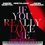 Фото David Guetta - If You Really Love Me (How Will I Know) (feat.Mistajam & John Newman)